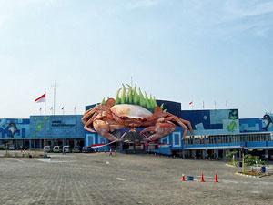 Wisata Bahari Lamongan The Newest Marine Tourism In East Java