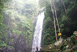 Kakek Bodo Waterfall Forest Recreation In Pasuruan Tourism